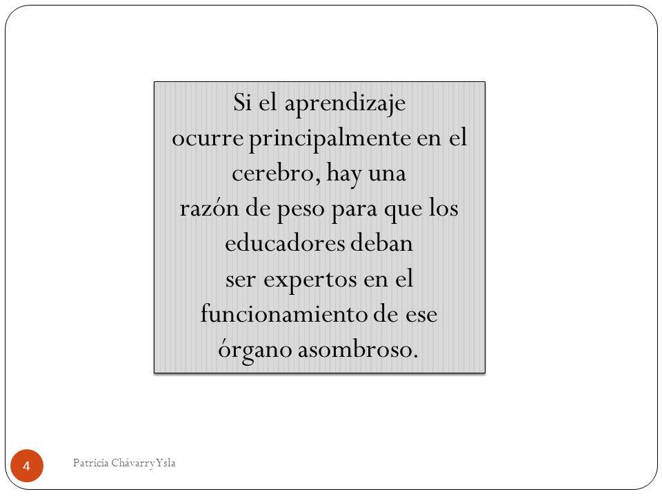 Si el aprendizaje ocurre principalmente en el cerebro, hay una razón de peso para que los educadores deban ser expertos en el funcionamiento de ese órgano asombroso.