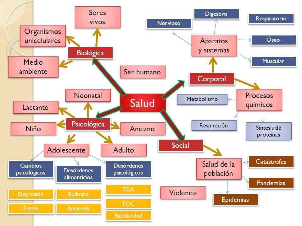 Salud Corporal Biológica Psicológica Nervioso Seres vivos Seres vivos Social Organismos unicelulares Organismos unicelulares Aparatos y sistemas Apara