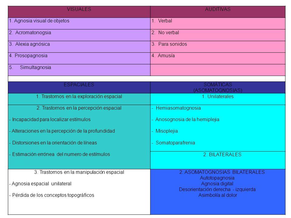 VISUALES AUDITIVAS 1. Agnosia visual de objetos 1. Verbal 2. Acromatonogsia 2. No verbal 3. Alexia agnósica 3. Para sonidos 4. Prosopagnosia 4. Amusía