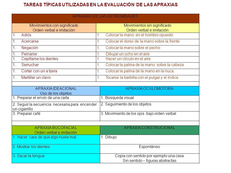 Parieto Temporal OccipitalFrontalEspacial LENGUAJE ESCRITO 1.