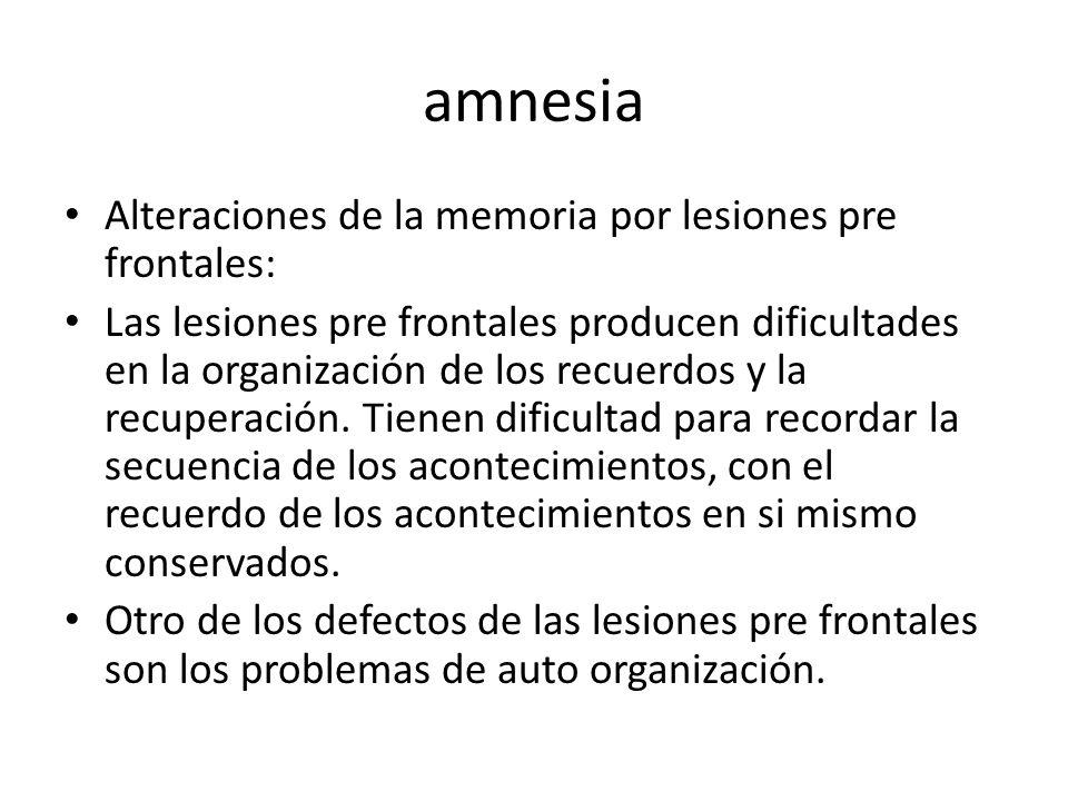 amnesia Alteraciones de la memoria por lesiones pre frontales: Las lesiones pre frontales producen dificultades en la organización de los recuerdos y la recuperación.