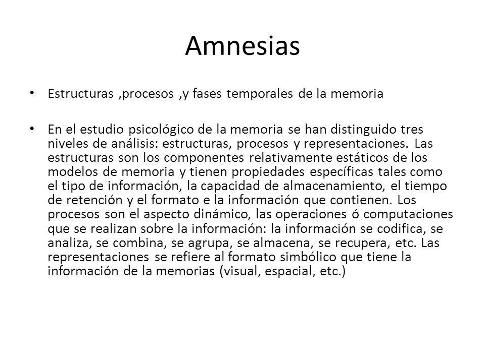 Amnesias Estructuras,procesos,y fases temporales de la memoria En el estudio psicológico de la memoria se han distinguido tres niveles de análisis: estructuras, procesos y representaciones.