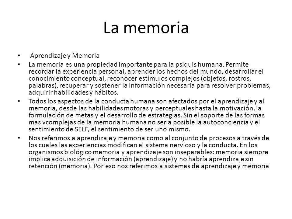 La memoria Aprendizaje y Memoria La memoria es una propiedad importante para la psiquis humana. Permite recordar la experiencia personal, aprender los