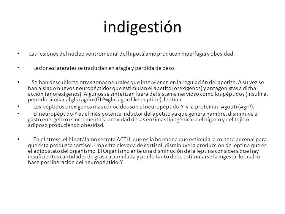indigestión Las lesiones del núcleo ventromedial del hipotálamo producen hiperfagia y obesidad. Lesiones laterales se traducían en afagia y pérdida de