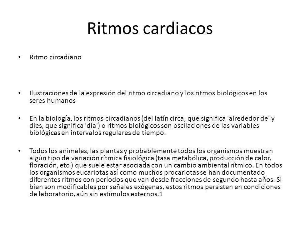 Ritmos cardiacos Ritmo circadiano Ilustraciones de la expresión del ritmo circadiano y los ritmos biológicos en los seres humanos En la biología, los