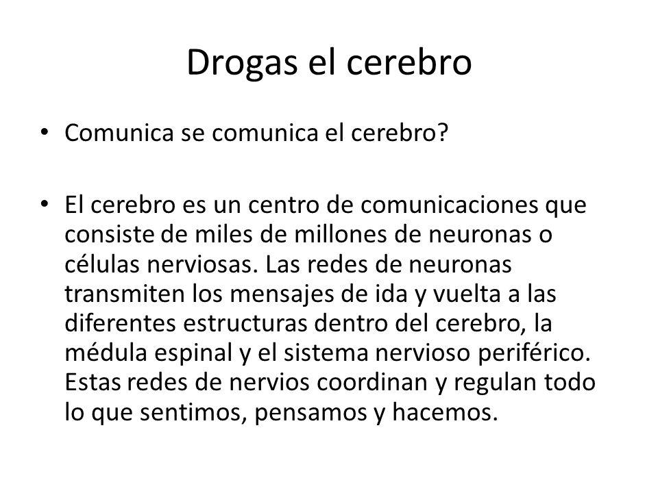 Drogas el cerebro Comunica se comunica el cerebro? El cerebro es un centro de comunicaciones que consiste de miles de millones de neuronas o células n