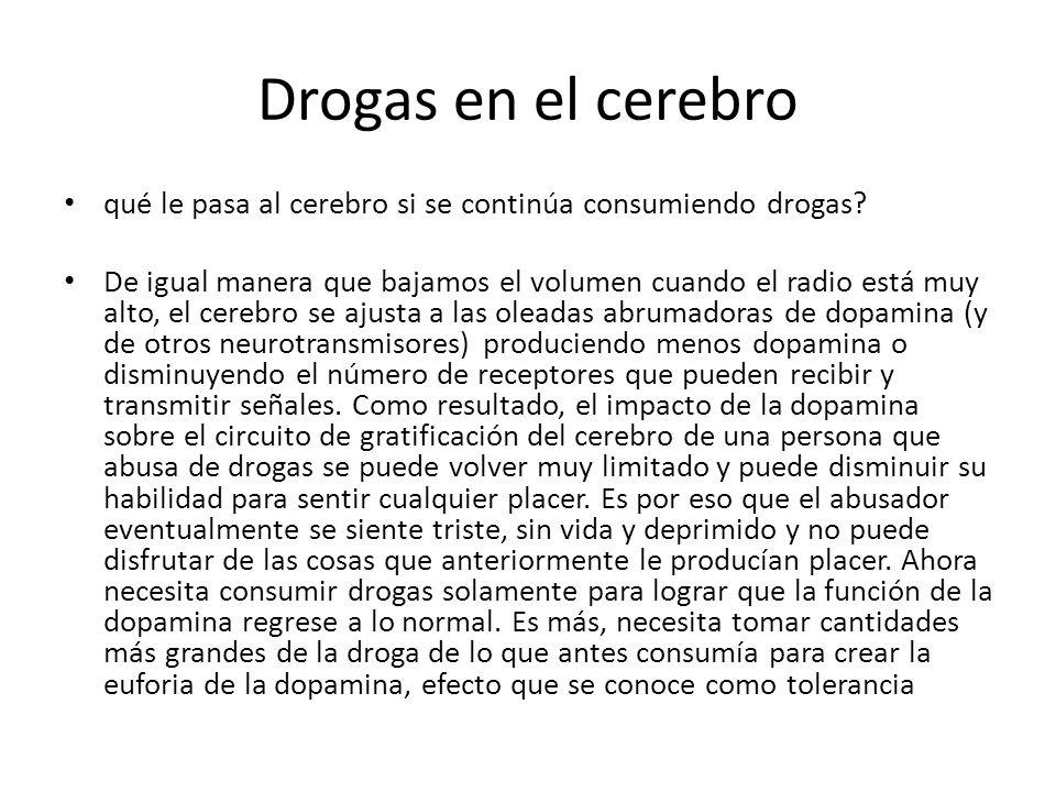 Drogas en el cerebro qué le pasa al cerebro si se continúa consumiendo drogas.