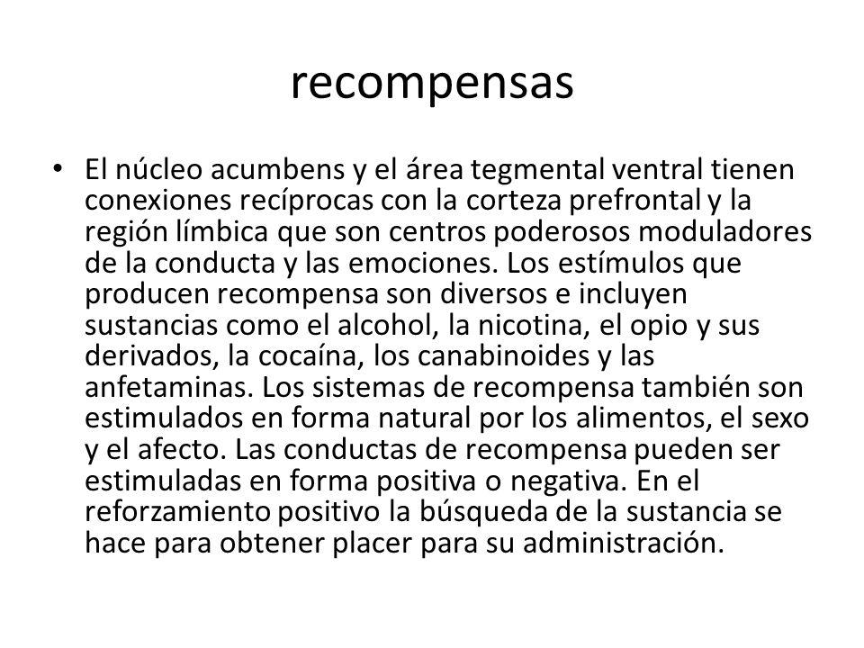 recompensas El núcleo acumbens y el área tegmental ventral tienen conexiones recíprocas con la corteza prefrontal y la región límbica que son centros poderosos moduladores de la conducta y las emociones.