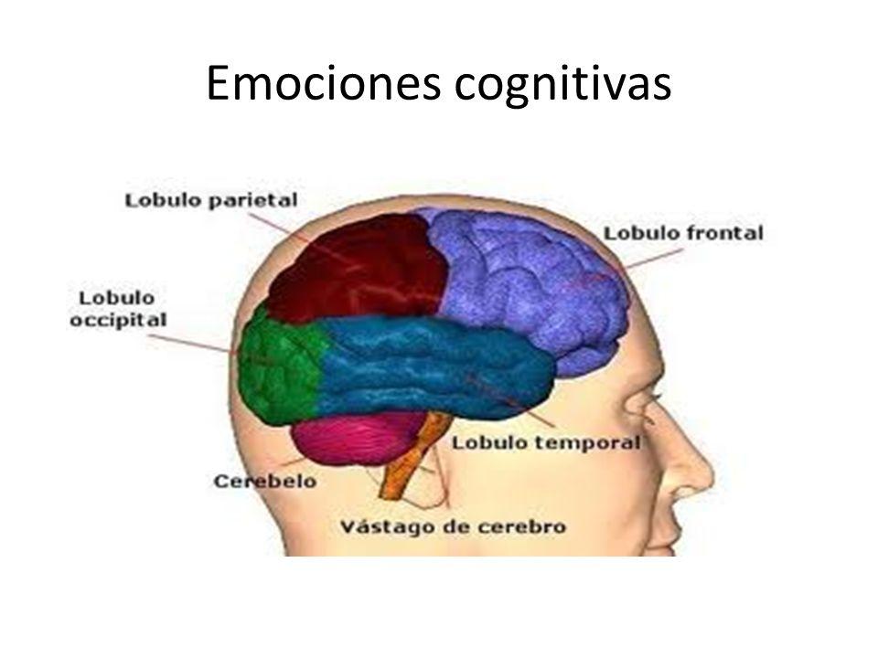 Emociones cognitivas