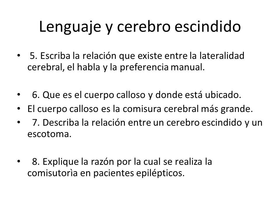 Lenguaje y cerebro escindido 5.