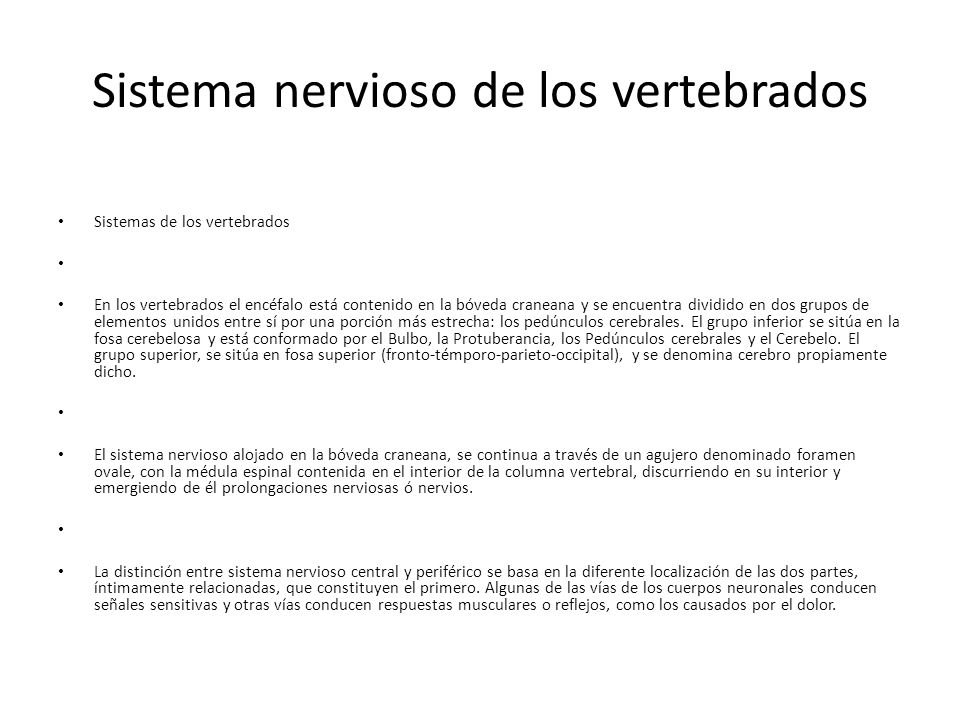 Sistema nervioso de los vertebrados Sistemas de los vertebrados En los vertebrados el encéfalo está contenido en la bóveda craneana y se encuentra dividido en dos grupos de elementos unidos entre sí por una porción más estrecha: los pedúnculos cerebrales.