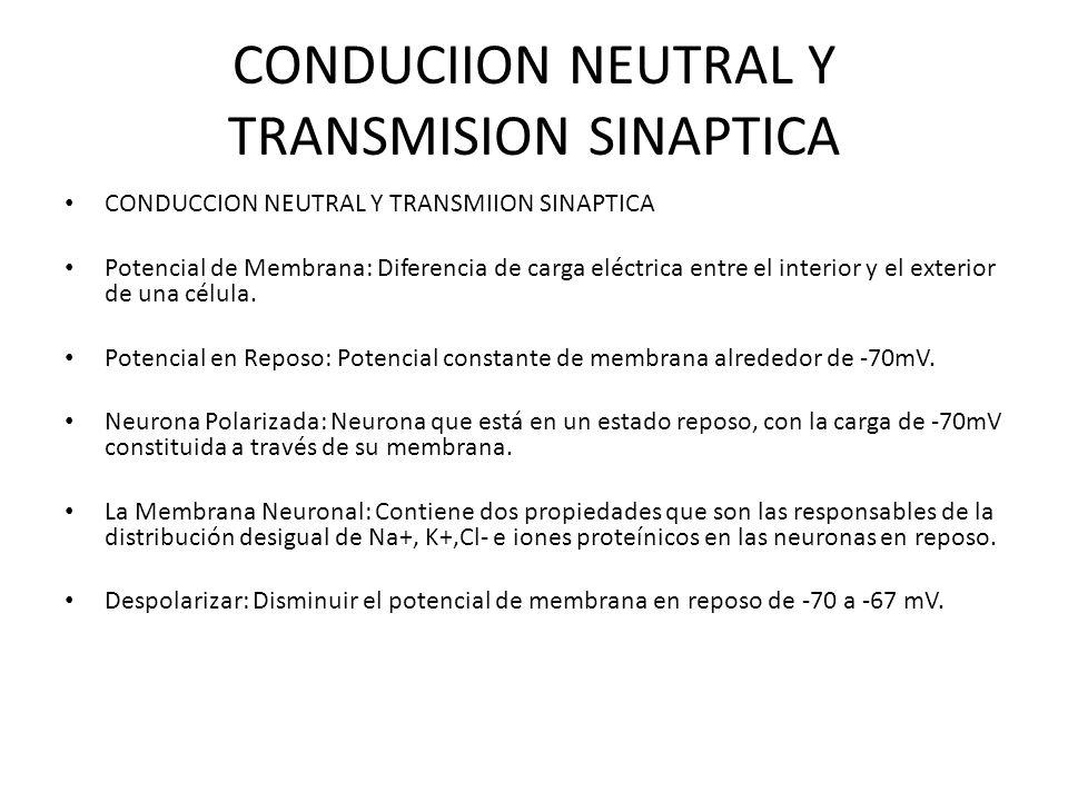 CONDUCIION NEUTRAL Y TRANSMISION SINAPTICA CONDUCCION NEUTRAL Y TRANSMIION SINAPTICA Potencial de Membrana: Diferencia de carga eléctrica entre el int