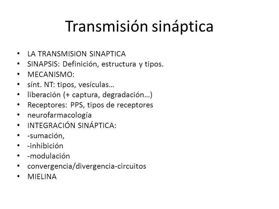 Transmisión sináptica LA TRANSMISION SINAPTICA SINAPSIS: Definición, estructura y tipos. MECANISMO: sínt. NT: tipos, vesículas… liberación (+ captura,