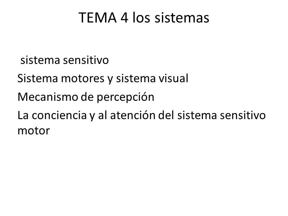 TEMA 4 los sistemas sistema sensitivo Sistema motores y sistema visual Mecanismo de percepción La conciencia y al atención del sistema sensitivo motor