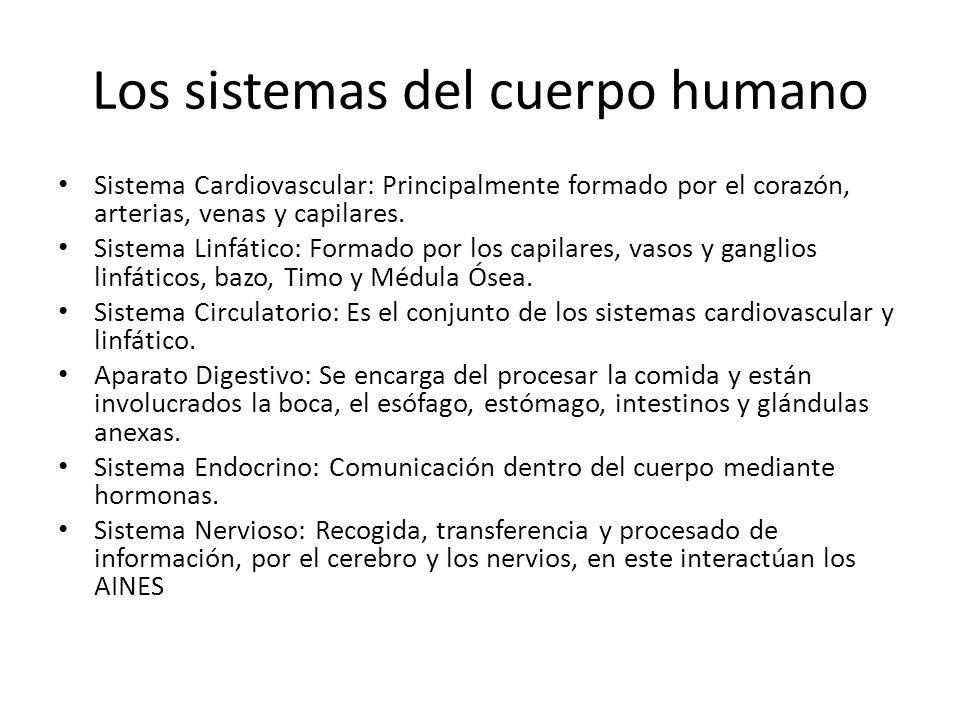Los sistemas del cuerpo humano Sistema Cardiovascular: Principalmente formado por el corazón, arterias, venas y capilares. Sistema Linfático: Formado