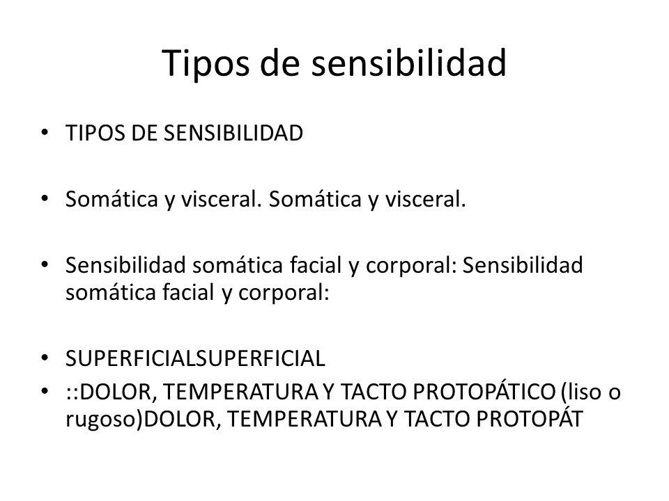 Tipos de sensibilidad TIPOS DE SENSIBILIDAD Somática y visceral. Somática y visceral. Sensibilidad somática facial y corporal: Sensibilidad somática f