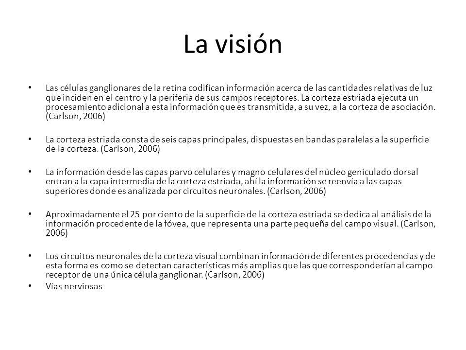 La visión Las células ganglionares de la retina codifican información acerca de las cantidades relativas de luz que inciden en el centro y la periferi