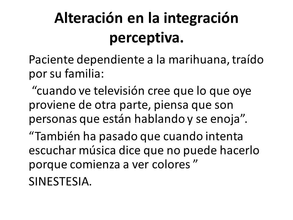 Alteración en la integración perceptiva. Paciente dependiente a la marihuana, traído por su familia: cuando ve televisión cree que lo que oye proviene