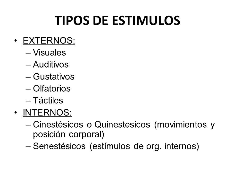 TIPOS DE ESTIMULOS EXTERNOS: –Visuales –Auditivos –Gustativos –Olfatorios –Táctiles INTERNOS: –Cinestésicos o Quinestesicos (movimientos y posición co