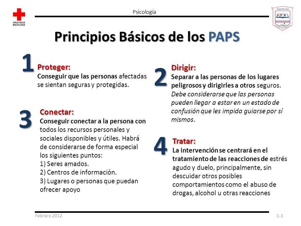 Febrero 20121-1 Psicología Principios Básicos de los PAPS Tratar: La intervención se centrará en el tratamiento de las reacciones de estrés agudo y du