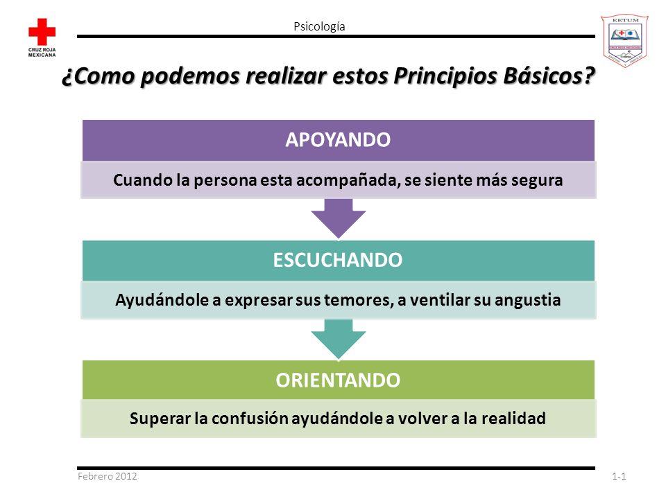 Febrero 20121-1 Psicología ¿Como podemos realizar estos Principios Básicos? ORIENTANDO Superar la confusión ayudándole a volver a la realidad ESCUCHAN