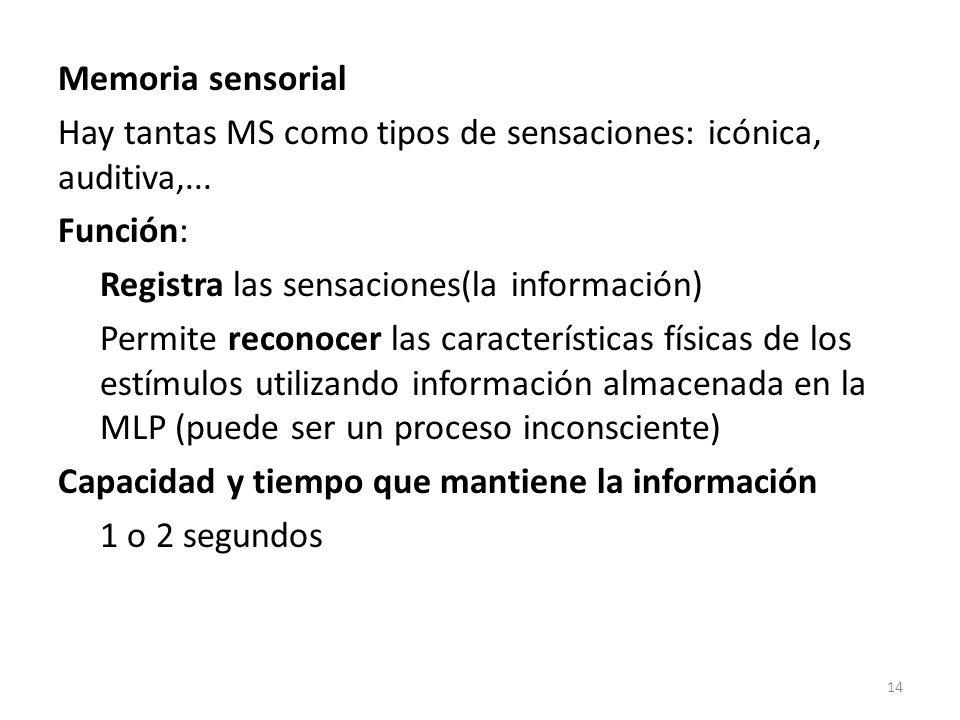 Memoria sensorial Hay tantas MS como tipos de sensaciones: icónica, auditiva,... Función: Registra las sensaciones(la información) Permite reconocer l