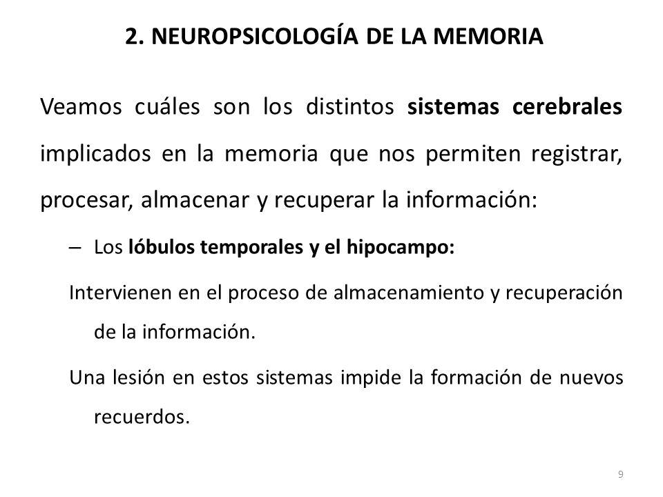 2. NEUROPSICOLOGÍA DE LA MEMORIA Veamos cuáles son los distintos sistemas cerebrales implicados en la memoria que nos permiten registrar, procesar, al