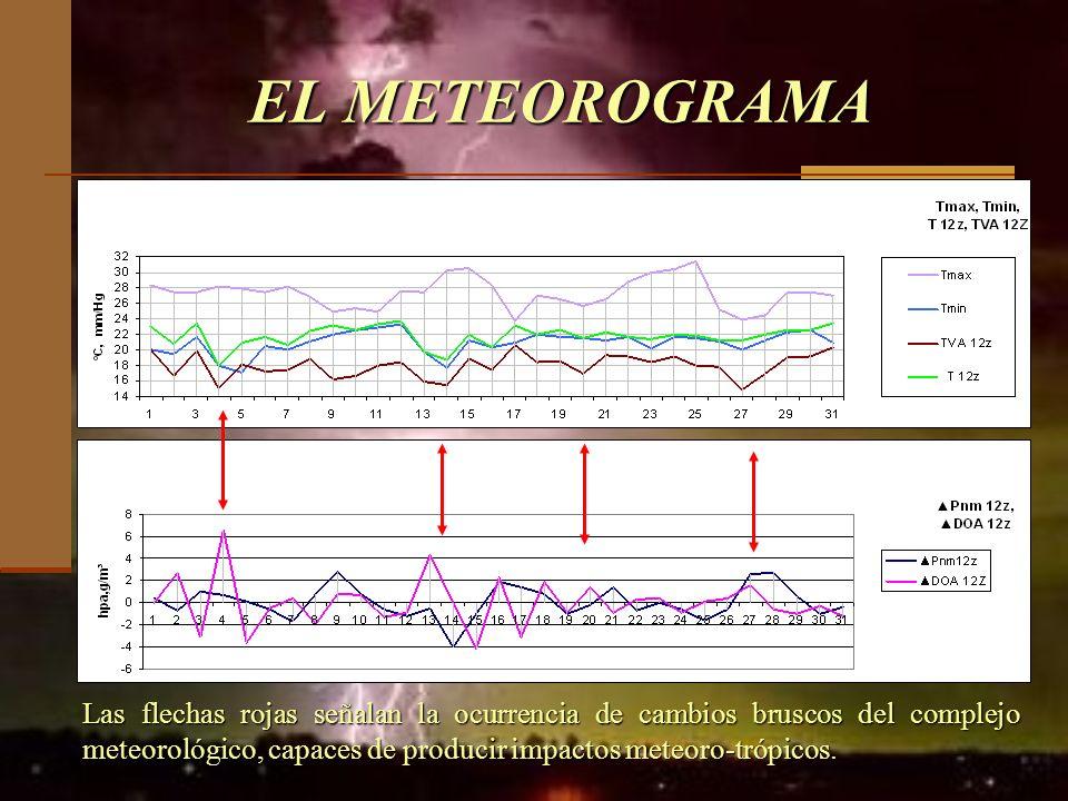 EL METEOROGRAMA Las flechas rojas señalan la ocurrencia de cambios bruscos del complejo meteorológico, capaces de producir impactos meteoro-trópicos.
