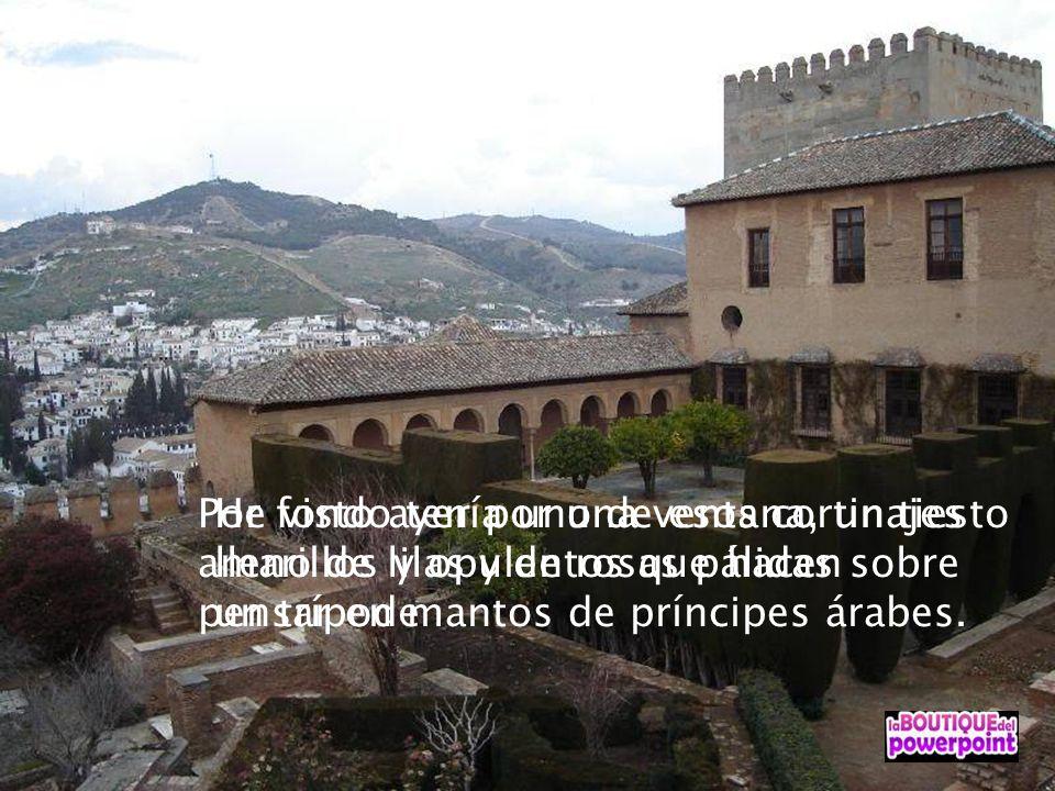 Si señora, este es un castillo de verdad, propiamente hablando, es una casa solariega fortificada Pero es la más hermosa de cuanto existen en su clase.