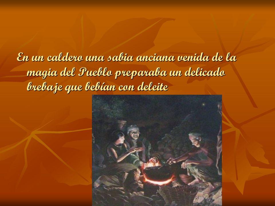 En un caldero una sabia anciana venida de la magia del Pueblo preparaba un delicado brebaje que bebían con deleite