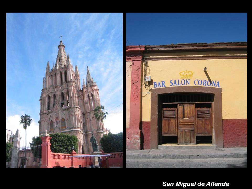 Puesta de Sol - Michoacan