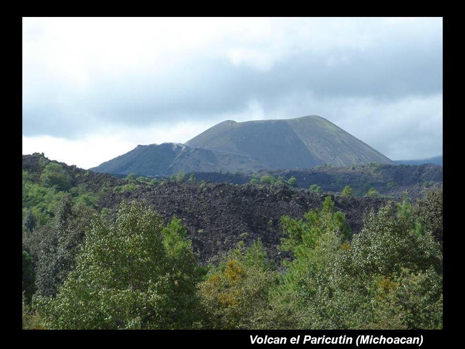 Volcan el Paricutin (Michoacan)