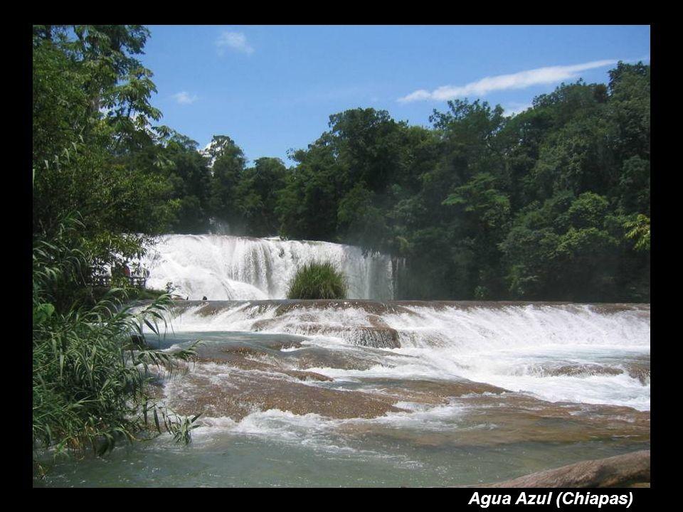 Agua Azul (Chiapas)