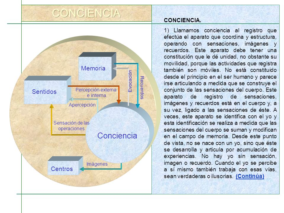 CONCIENCIA. 1) Llamamos conciencia al registro que efectúa el aparato que coordina y estructura, operando con sensaciones, imágenes y recuerdos. Este