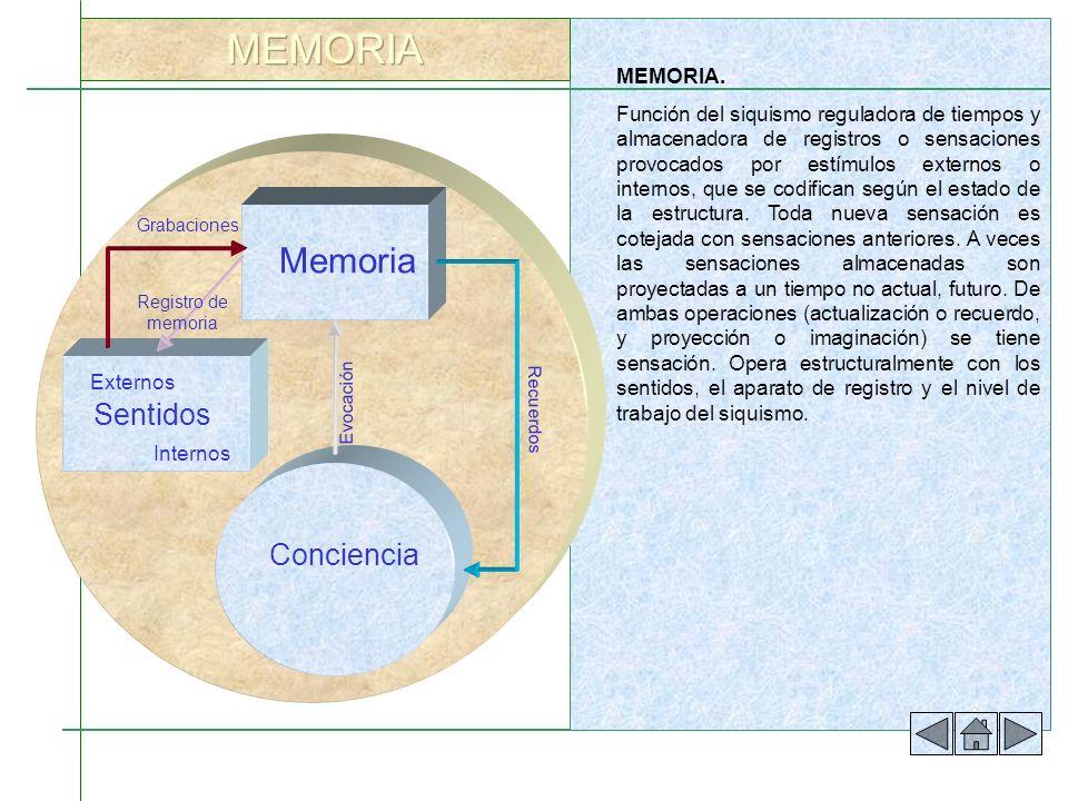 MEMORIA. Función del siquismo reguladora de tiempos y almacenadora de registros o sensaciones provocados por estímulos externos o internos, que se cod