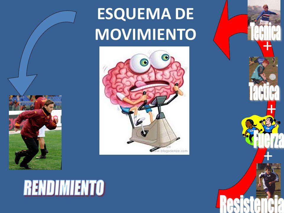 + + + ESQUEMA DE MOVIMIENTO