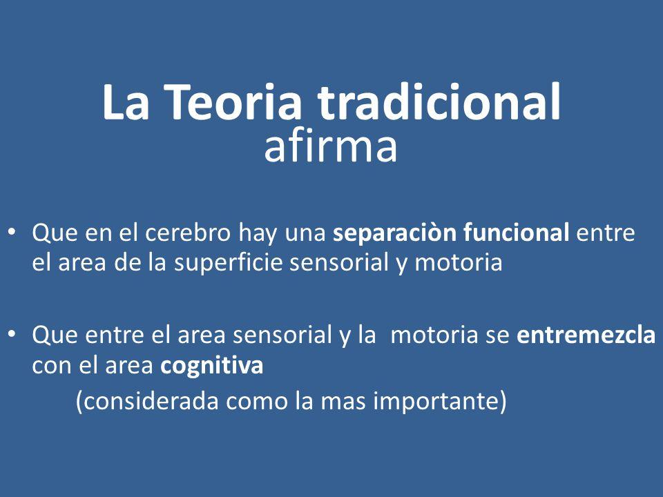 La Teoria tradicional afirma Que en el cerebro hay una separaciòn funcional entre el area de la superficie sensorial y motoria Que entre el area senso