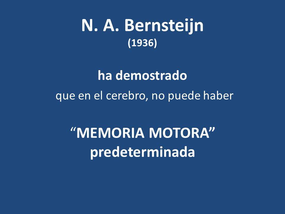 N. A. Bernsteijn (1936) ha demostrado que en el cerebro, no puede haberMEMORIA MOTORA predeterminada