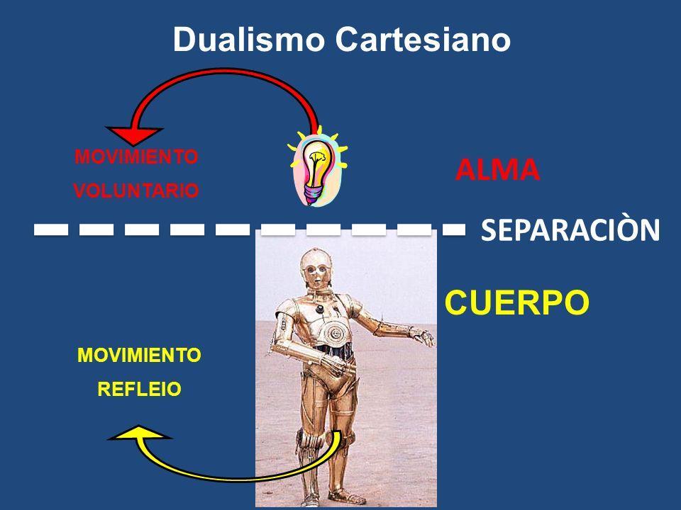 MOVIMIENTO VOLUNTARIO MOVIMIENTO REFLEIO CUERPO Dualismo Cartesiano SEPARACIÒN ALMA