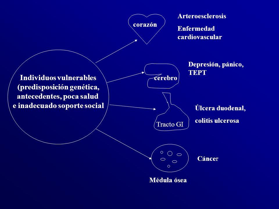 corazón cerebro Tracto GI Médula ósea Arteroesclerosis Enfermedad cardiovascular Depresión, pánico, TEPT Úlcera duodenal, colitis ulcerosa Cáncer Individuos vulnerables (predisposición genética, antecedentes, poca salud e inadecuado soporte social