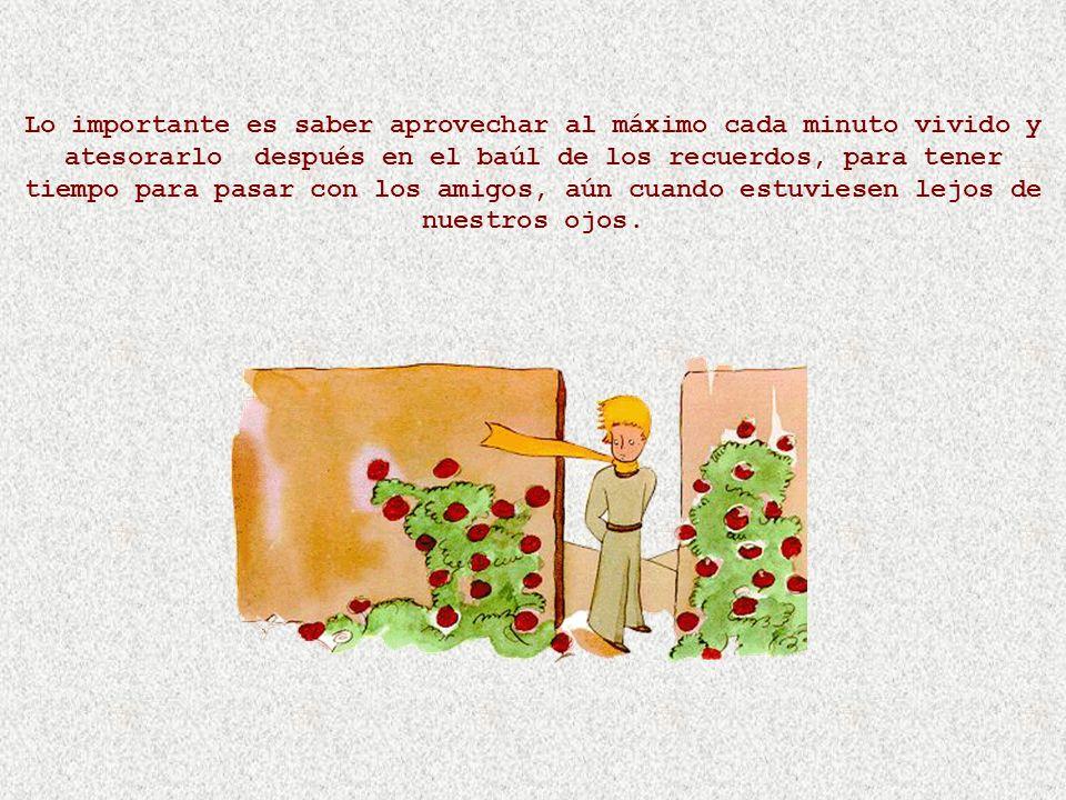 Saint-Exupéry dice: El tiempo que perdiste por tu rosa hace que tu rosa sea tan importante. Y yo digo que el tiempo que perdemos con cada amigo hace q