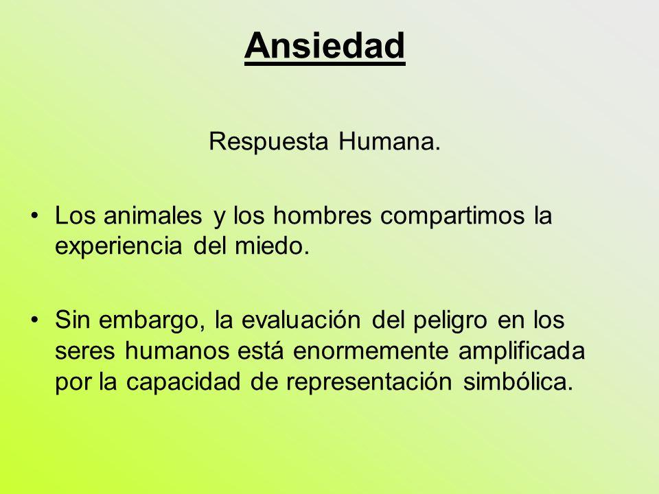 Ansiedad Respuesta Humana. Los animales y los hombres compartimos la experiencia del miedo. Sin embargo, la evaluación del peligro en los seres humano