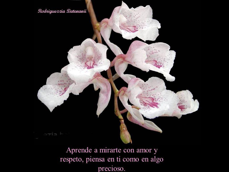Aprende a mirarte con amor y respeto, piensa en ti como en algo precioso.