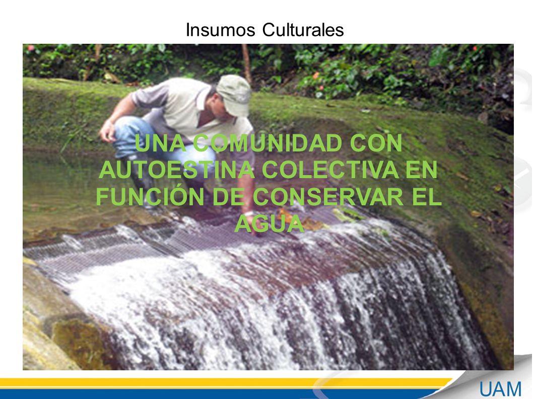 Insumos Culturales UNA COMUNIDAD CON AUTOESTINA COLECTIVA EN FUNCIÓN DE CONSERVAR EL AGUA