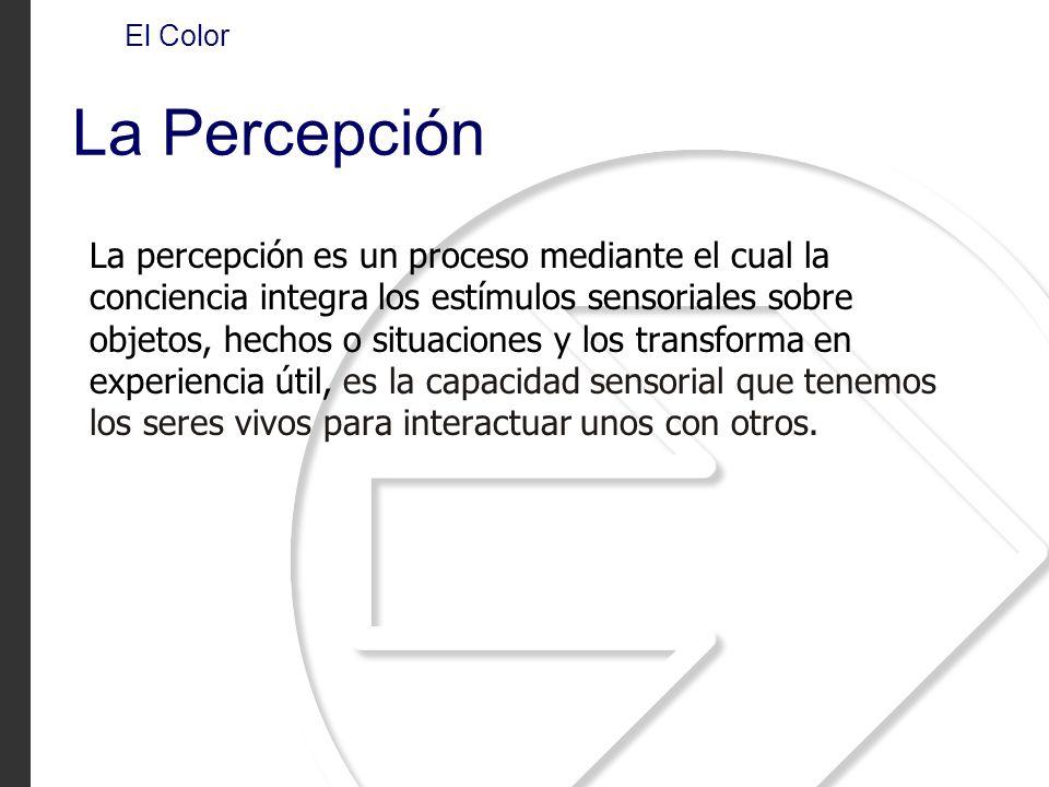 La Percepción La percepción es un proceso mediante el cual la conciencia integra los estímulos sensoriales sobre objetos, hechos o situaciones y los t