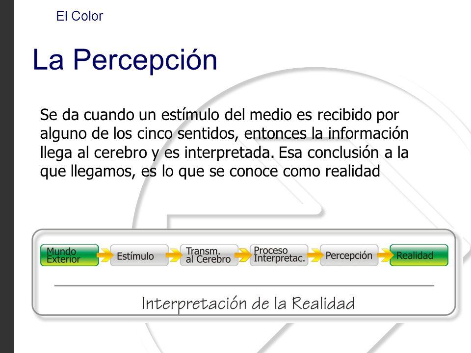 El Color La Percepción Se da cuando un estímulo del medio es recibido por alguno de los cinco sentidos, entonces la información llega al cerebro y es