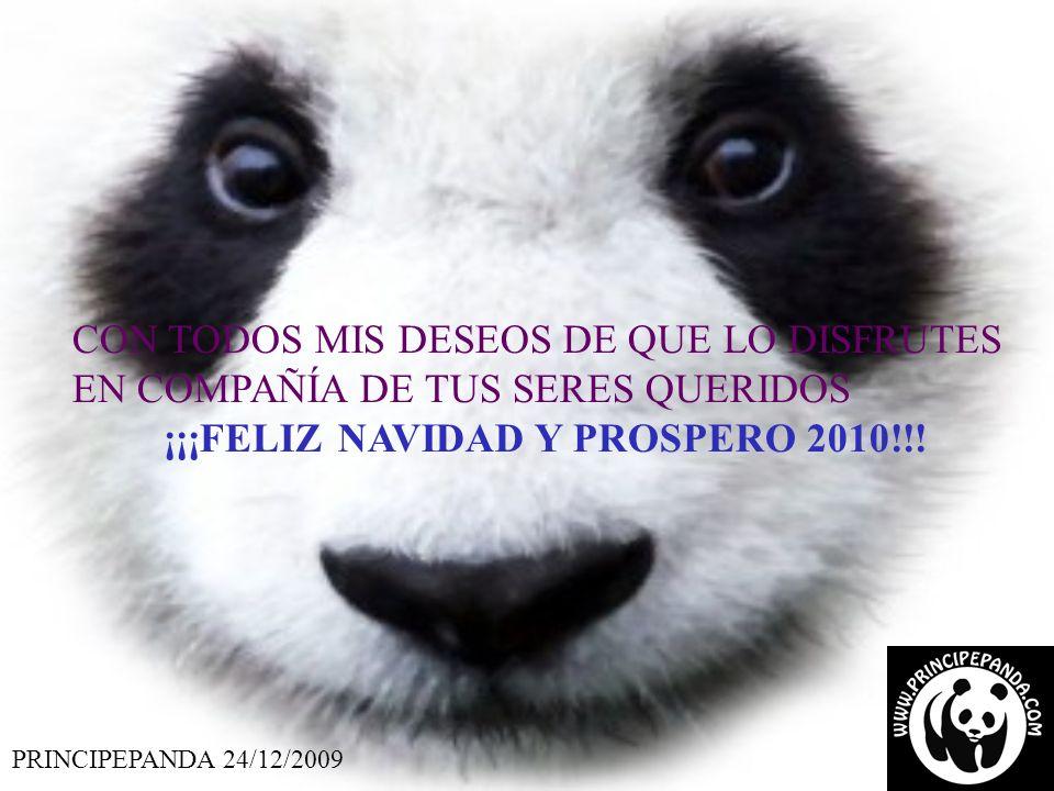 PRINCIPEPANDA 24/12/2009 CON TODOS MIS DESEOS DE QUE LO DISFRUTES EN COMPAÑÍA DE TUS SERES QUERIDOS ¡¡¡FELIZ NAVIDAD Y PROSPERO 2010!!!