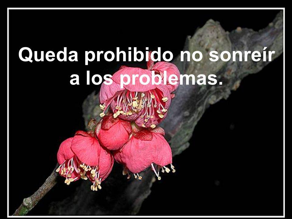 Queda prohibido no sonreír a los problemas.