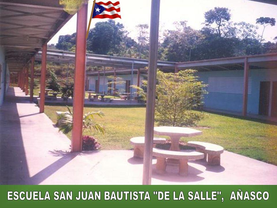 El Grupo Scout 48 me despidió en su local, cuando en 1993 fui destinado a la escuela lasallista de Añasco, Puerto Rico. Los Hnos. Lasallistas tenemos