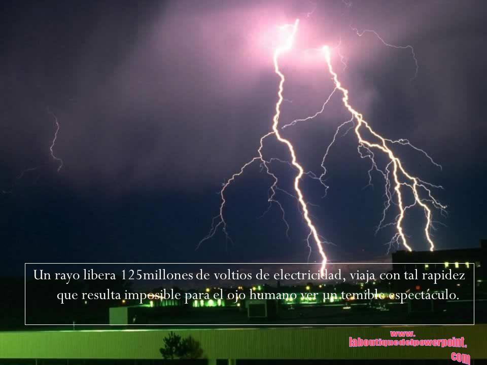 Un rayo libera 125millones de voltios de electricidad, viaja con tal rapidez que resulta imposible para el ojo humano ver un temible espectáculo.